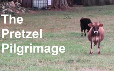 VIDEO: The Pretzel Pilgrimage